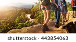 trek hiking destination... | Shutterstock . vector #443854063