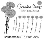 vector set isolated of flowers... | Shutterstock .eps vector #444042043