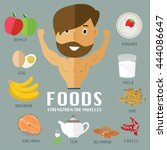 foods for building muscles  | Shutterstock .eps vector #444086647
