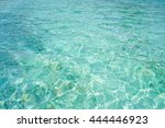 crystal clear blue water in... | Shutterstock . vector #444446923