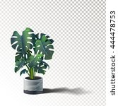 monstera in a pot on a wooden... | Shutterstock .eps vector #444478753