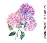summer watercolor vintage... | Shutterstock . vector #444505297