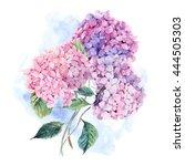 summer watercolor vintage...   Shutterstock . vector #444505303