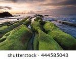 Green Moss Covered Rocks...