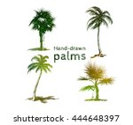 set of hand drawn colored palms....   Shutterstock .eps vector #444648397