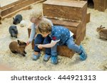 children play with the rabbits... | Shutterstock . vector #444921313