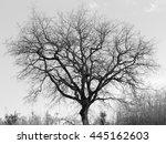 miscellaneous | Shutterstock . vector #445162603