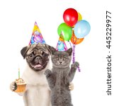 Stock photo cat and dog in birthday hats holding balloons and cake isolated on white background 445229977