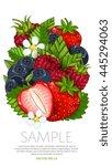 set of berries mix vector... | Shutterstock .eps vector #445294063