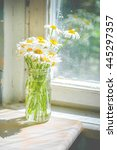 daisies in a glass jar vase on... | Shutterstock . vector #445297357