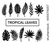 tropical leaves set  hand drawn ... | Shutterstock .eps vector #445474057