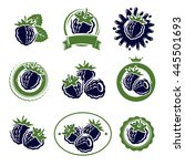 blackberry labels and elements... | Shutterstock .eps vector #445501693