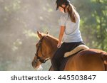 Stock photo young girl riding a horse 445503847
