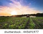 varna  bulgaria   june 10  2016 ... | Shutterstock . vector #445691977