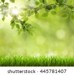 eco nature   green and blue... | Shutterstock . vector #445781407