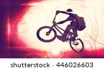 boy with bmx. vintage mood... | Shutterstock . vector #446026603