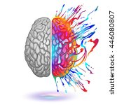 human brain with creative splash | Shutterstock .eps vector #446080807