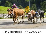farmers with a herd of cows on... | Shutterstock . vector #446207317