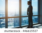 mature business executive and... | Shutterstock . vector #446615527