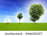 young plant life process from... | Shutterstock . vector #446650237
