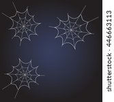 spider web on dark blue... | Shutterstock .eps vector #446663113