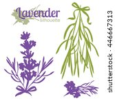 Set Of Silhouettes Of Lavender...