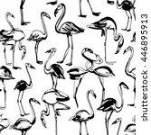 vector illustration  tropical... | Shutterstock .eps vector #446895913