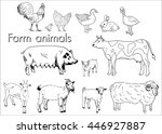 vector set illustration farm... | Shutterstock .eps vector #446927887