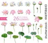 Vintage Waterlily Flowers In...