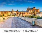 cordoba  spain  andalusia.... | Shutterstock . vector #446998267