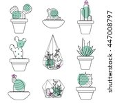 set of succulent plants and... | Shutterstock .eps vector #447008797