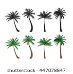 palm tree set nature floral... | Shutterstock .eps vector #447078847
