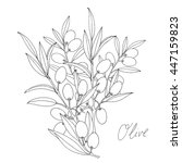 olive template | Shutterstock .eps vector #447159823