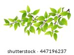 tree branch with green leaves.... | Shutterstock .eps vector #447196237