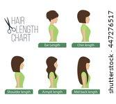hair length chart side view.... | Shutterstock .eps vector #447276517