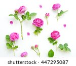 assorted pink roses heads on... | Shutterstock . vector #447295087