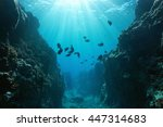 Small Canyon Underwater Carved...