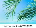 sea scene palm  | Shutterstock . vector #447357373