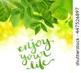 enjoy your life poster with... | Shutterstock .eps vector #447526897