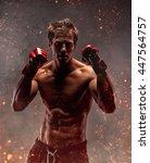 portrait of fighter in fire... | Shutterstock . vector #447564757