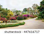 Beautiful Flowers Landscapes I...