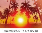 silhouette coconut palm trees... | Shutterstock . vector #447642913