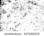 grunge texture white and black. ... | Shutterstock .eps vector #447650233