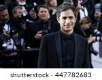 cannes  france   may 11  gael... | Shutterstock . vector #447782683