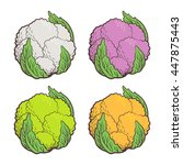 different sorts of cauliflower  ... | Shutterstock .eps vector #447875443