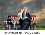 Stock photo senior man with dogs and cat on his lap on bench 447964363
