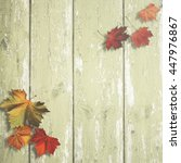 abstract autumnal backgrounds... | Shutterstock . vector #447976867