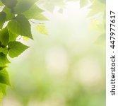 afternoon haze  abstract summer ... | Shutterstock . vector #447977617