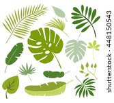 tropical leaves  floral...   Shutterstock .eps vector #448150543