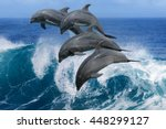 four beautiful dolphins jumping ... | Shutterstock . vector #448299127